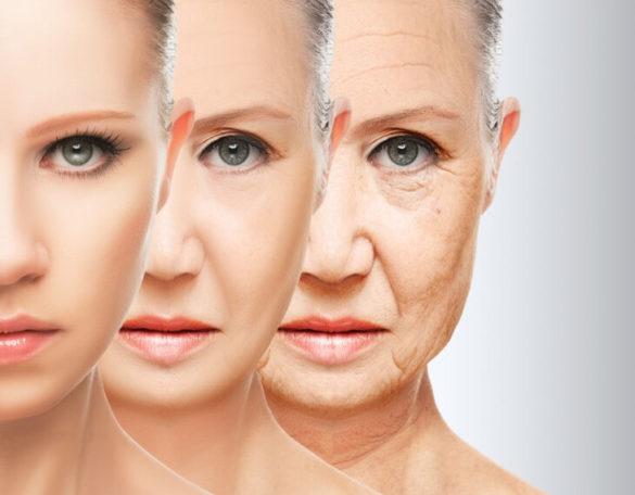 Anti-Aging – Prinzipien und Therapien