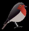 Logo Robin GmbH